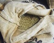 Rohe Bohnen zum Kaffeerösten